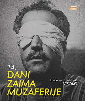 DZM17-2