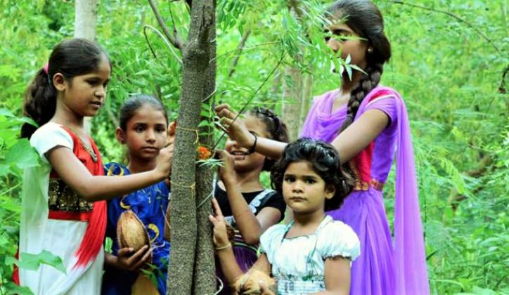 PRETVORENO U ZELENU OAZU: Selo koje zasadi 111 stabala drveća svaki put kada se rodi žensko dijete